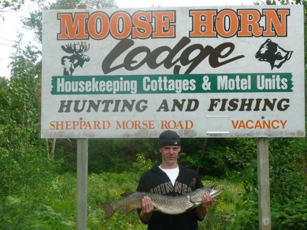 Northern Pike Fishing At